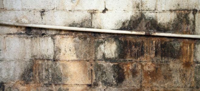 墙体地基渗水怎样做防水补漏